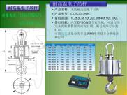 OCS-XC-HB-耐高温电子吊称