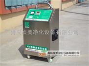 外置式动态消毒机 臭氧发生器 风淋室 臭氧消毒机厂家直销