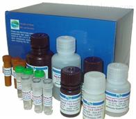 猪心肌肌钙蛋白Ⅰ检测试剂盒