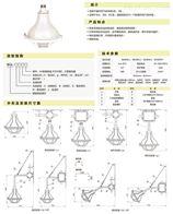 BFL-200L上海新黎明BGL-200L系列增安型防爆燈