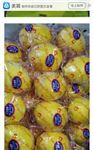新科力柠檬套袋机柠檬套袋机