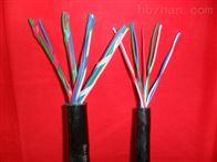 阻燃铁路信号电缆ZR-PTYA、ZR-PTYA23、ZR-PTYA22