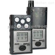 MX6 复合式多气体检测仪