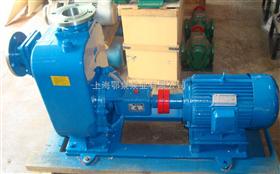 ZX65-50-125化工自吸泵