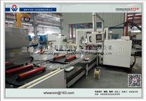 浙江温岭万新新能源汽车电机装配生产线