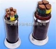 VV VV22 VLV VLV22動力電纜