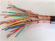 DJYPVR-500V-7*2*1計算機電纜
