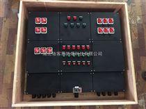 BXMD8050全塑防爆防腐配电箱来图订做