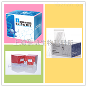 大鼠高敏C反应蛋白elisa试剂盒