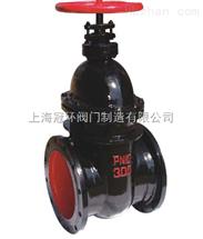 Z45T暗杆铸铁闸阀