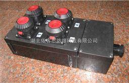BXX8050-6/K带总开关防爆防腐检修插座箱
