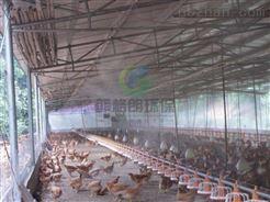 山东家禽市场喷雾消毒知名品牌/喷雾消毒设备生产厂家