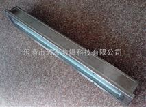 BHY-3x30w不锈钢防爆洁净荧光灯热卖