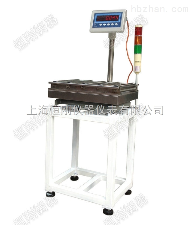 上海滚筒输送电子秤可按要求定做