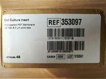 BD Falcon细胞培养小室24孔板8UM透明PET膜353097