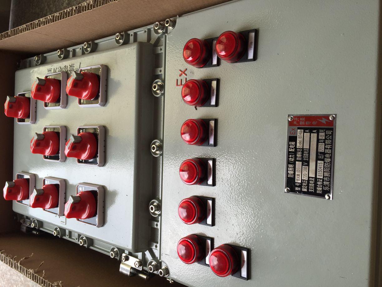 内可选配装断路器,交流接触器,热继电器,ex防爆控制按钮,ex防爆信号灯