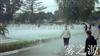 南宁公园喷雾造景