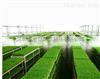 东莞凤岗蔬果喷雾加湿保鲜设备豆芽作坊喷雾加湿系统
