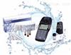 美国Orion AQ4000精密防水型便携式多参数水质分析仪